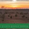 """Monatsbild März des Kalenders """"5 Jahreszeiten der Heide"""""""