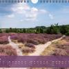 """Monatsbild August des Kalenders """"Heideblüte"""""""