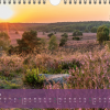 "Monatsbild Januar des Kalenders ""Heideblüte"""