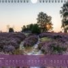 "Monatsbild November des Kalenders ""Heideblüte"""